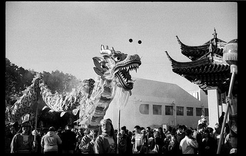 Chinese New Year Celebrations - Dunedin - New Zealand | ©Michael McQueen | Photographer . . . . #Dunedin #NewZealand #Documentary #Photographer #documentaryphotography #streetphotography