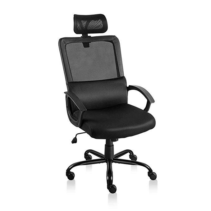 Statesville Ergonomic Mesh Office Chair With Adjustable Headrest