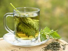 Stinging Nettle   The leaves and stems of stinging nettle possess anti-inflammatory actions and have long been used to treat painful muscles and joints, eczema, arthritis, and gout, as well as anemia.