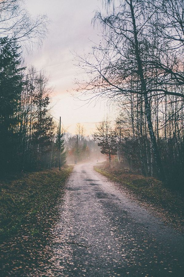 country walks | photo by anna-malin