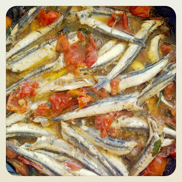 anchovies with tomatoes