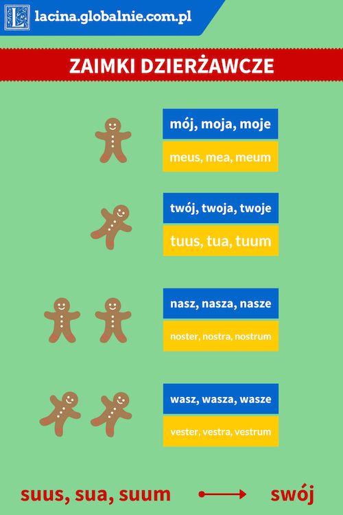 #zaimki #dzierżawcze #łacina #nauka #łaciny #podręcznik  http://lacina.globalnie.com.pl/zaimki-dzierzawcze-lacina/