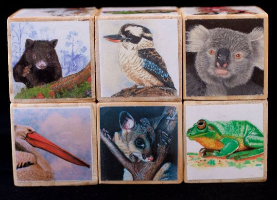 wooden blocks, baby blocks, australian wildlife blocks, wooden toy, nursery décor, original artwork, Jennifer Richardson.  These blocks feature original artwork of Australian flora and fauna by renowned Australian Wildlife artist Jennifer Richardson. Each block is adorned with beautiful pictures of Australian native animals and plant life, including koalas, possums, wombats, frogs and stunning images of the most colorful birds and plant life. The blocks each measure 42mm square (just under…
