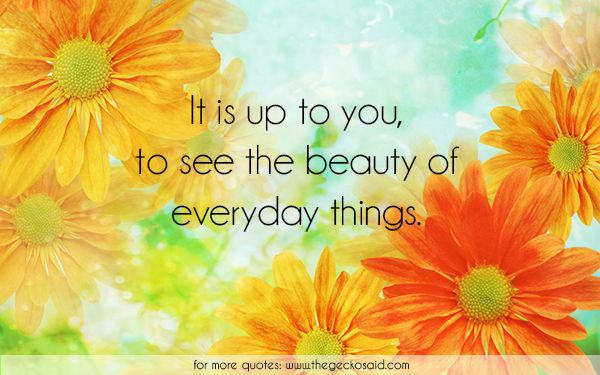 It is up to you, to see the beauty of everyday things.  #beauty #everyday #life #nature #quotes #see #things