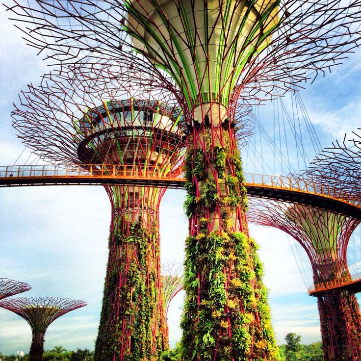 Enjoyed visiting Singapore's Gardens by the Bay