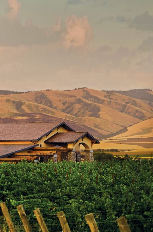 10 Top Winery Visits in Washington. Pinned from Shafer Vineyards page.