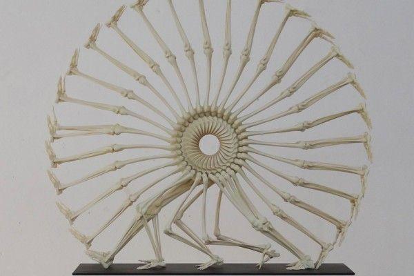 Monika Horčicová est une artiste tchèque qui réalise des sculptures ou des installations à partir du squelette humain.  L'artiste utilise une imprimante 3D pour réaliser ses oeuvres surréalistes et parfois humoristiques. Son travail est marqué par une rythmique cyclique qui donne un effet de mouvement et d'évolution aux sculptures.