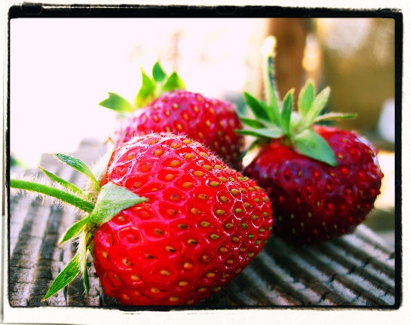 Hand picked strawberries daily! In the middle of the high desert!