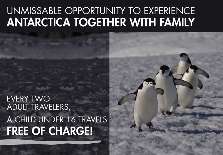 #Unmissable #opportunity to #experience #Antarctica together with #family! Beguiling #landscapes surrounded by #snow, #mountain ranges, meltwater streams, #glaciers and tabular #icebergs. Beaches ruled by vast #penguin rookeries, Antarctic fur #seals and Southern elephant seals. Observation of #seabirds and #whales. #Exciting #stories about the history of #exploration on the #Antarctic Peninsula. Such remote #places turn anyone into a real priviliged by getting to know them. Trips of 11, 12…