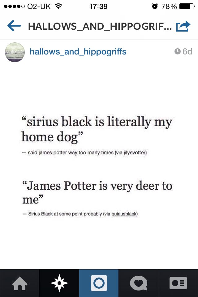 Sirius Black and James Potter
