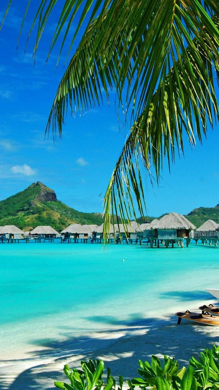 Bora Bora...Soon! William and Hal need to finish getting scuba certified. Soon!