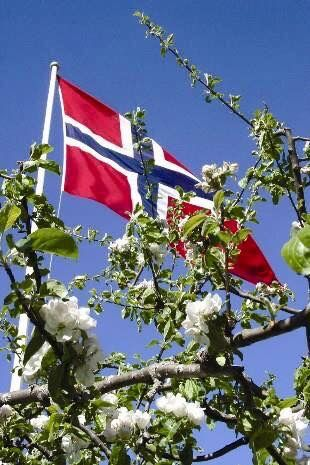 Gratulerer med Dagen   Happy Birthday  17th Of May is Norway's Independent's Day
