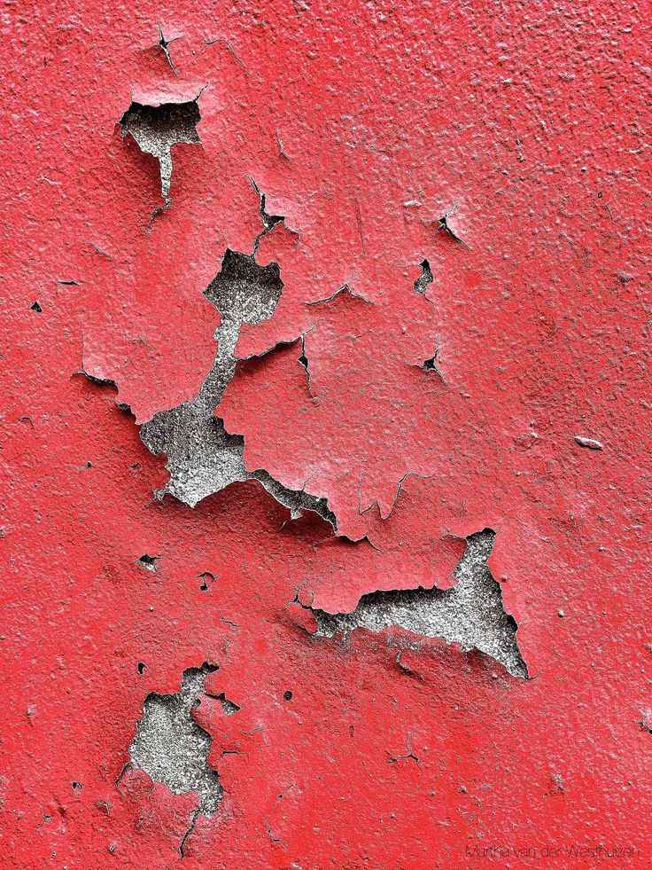 Peeling Wall Photo by Martha van der Westhuizen