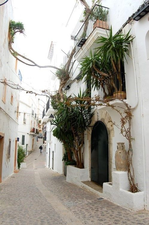 ibiza!!! Have to go here before I die. Ibiza, Spain. #partySpain