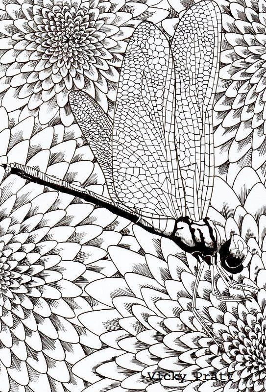 Week 5: Dragonfly on flower. Unipin fine liner on drafting film. Pen and ink. vicpratt.wix.com/... Find me on Facebook Vicky Pratt - Illustrator.