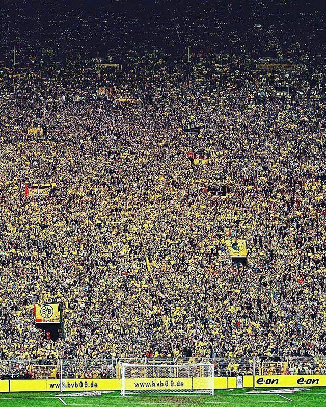 Borussia Dortmund have gone the whole of 2016 unbeaten at home! ⚽️⚫️ #Eurosport #Football #Soccer #Futbol #Borussia #Dortmund #BorussiaDortmund #BVB #BVB09 #Germany #German #Deutschland #DFB #DieMannschaft #Unbeaten #Home #Record #Westfalenstadion #SignalIdunaPark #Signal #Iduna #Park #Bundesliga : @bestofballers