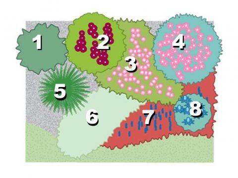 17 best images about tuin border idee n on pinterest. Black Bedroom Furniture Sets. Home Design Ideas