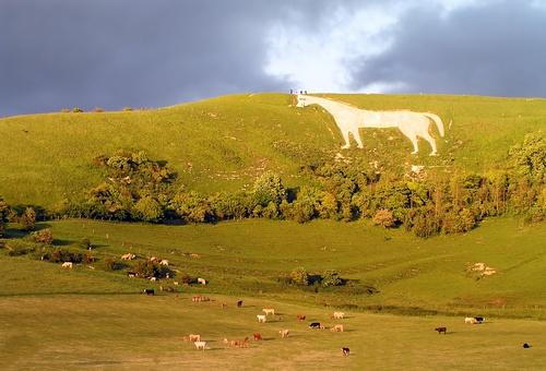Image of prehistoric White Horse on hill near Faringdon, England