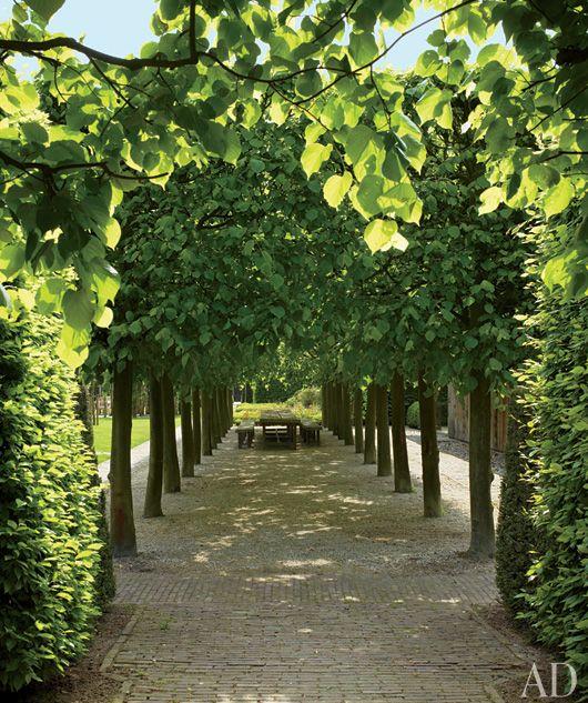 Allée: Idea, Garden Design, Architectural Digest, Outdoor Living, Linden Trees, Gardens, Outdoor Spaces, Landscape