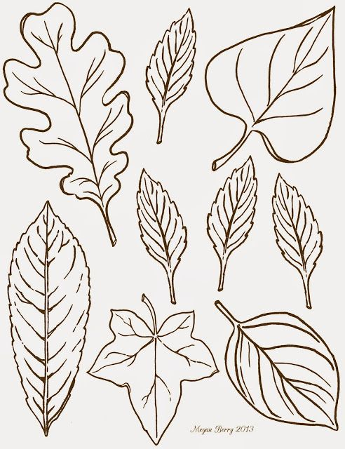 Leaf patterns oak, with laurel below it. Ivy in middle bottom. top right maybe ginkho Lilac & Lavender: Autumn