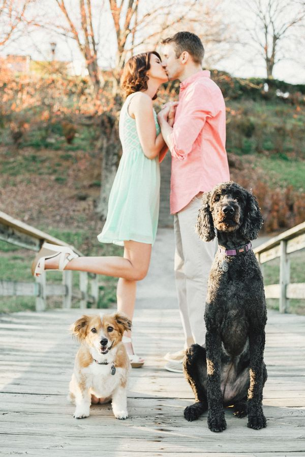These have to be the cutest dog engagement photos ever! by Jophoto