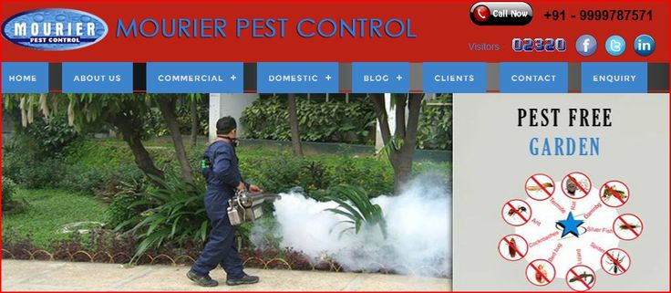 The Pest Control Service from Mourier protects restaurants at risk from attack by these key pests.