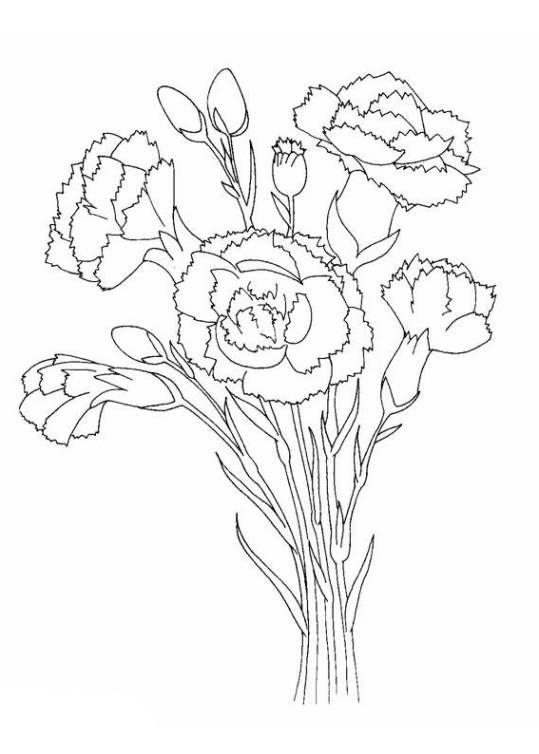 Pin Malbilder Blumen Blueten Ausmalbilder Vorlagen Zum Auto