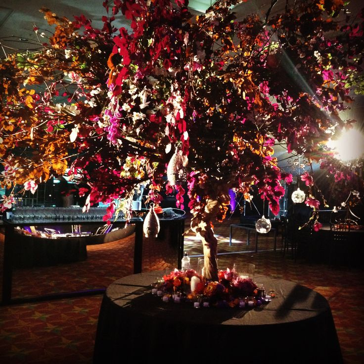 This Stunning Tree Caught the light and became a focal point for the Payal Party