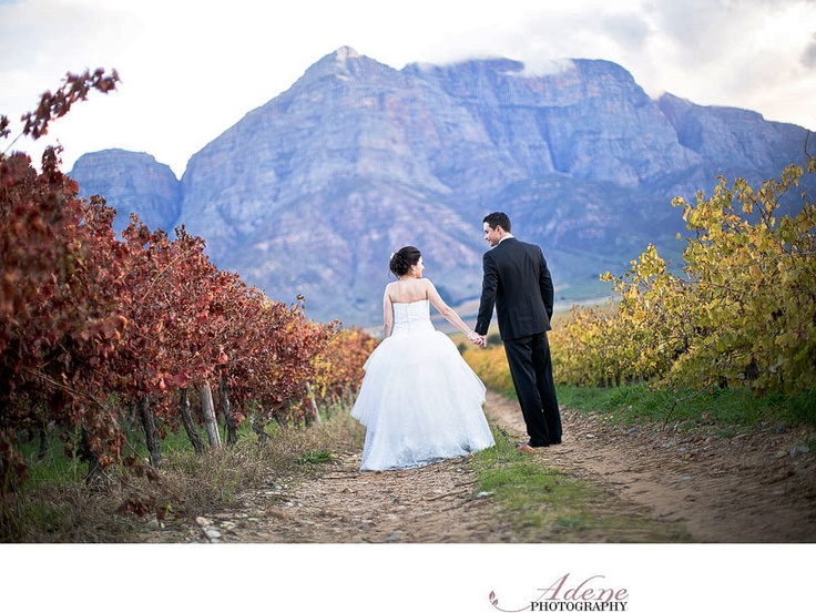 Getting Married in a vineyard in Cape Town. Majestic scenery with the mountains