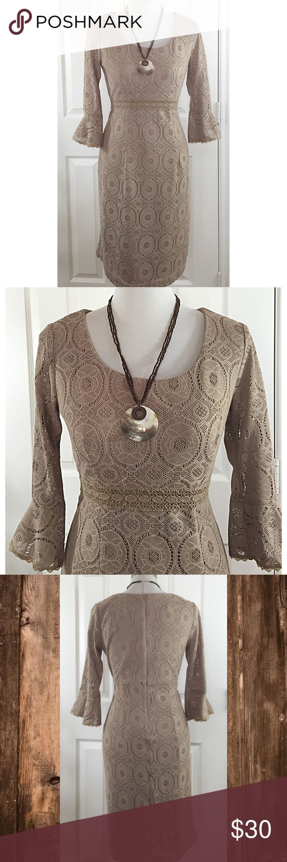 Neutral colored lacy dress with bell sleeves Gorgeous dress. Beautiful sleeve treatment, fully lined, back zipper. Excellent condition. Chris McLaughlin Dresses