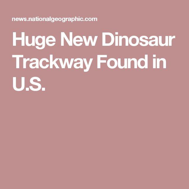 Huge New Dinosaur Trackway Found in U.S.
