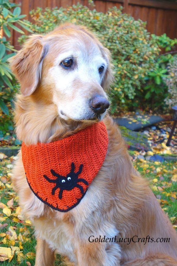 Halloween Dog Bandana Free Crochet Pattern Dog Bandana Pattern