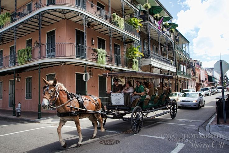 French Quarter Horse Ride - New Orleans
