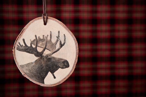 DIY Rustic Wood Slice Photo Transfer Ornaments