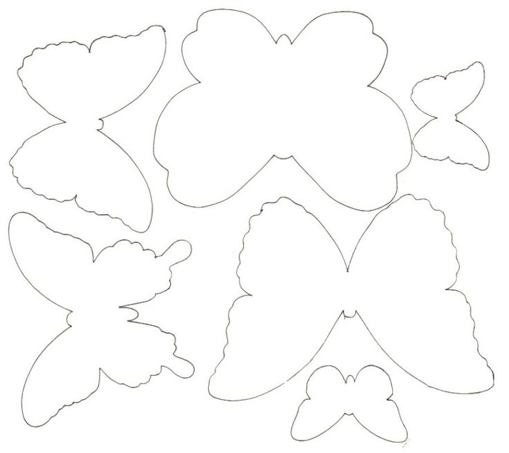 Plantillas de mariposas.