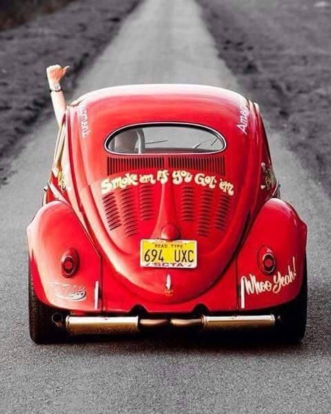 Vw Vans, Vw Beetles, Vintage, Vintage Cars, Vw Bugs