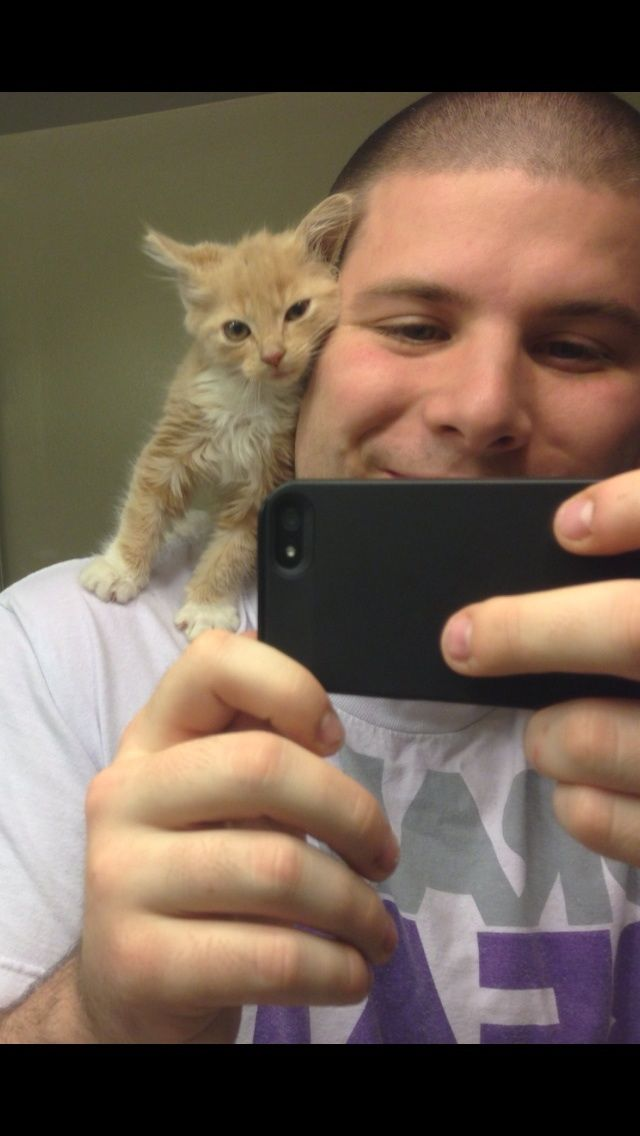 Cat:  I found this human in the parking garage today.  I think I'll adopt him.