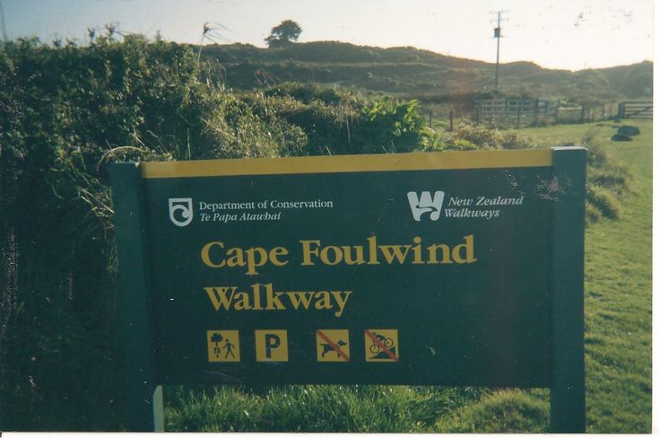 Cape Foulwind walkway is a Conservation NZ initiative,it begins at Tauranga Bay carpark and is an approximately one hour 30 minute recreational trek with the most picturesque scenery you'll ever experience.It ends at the Cape Foulwind Road Carpark.Of course,it can be done the opposite way around!