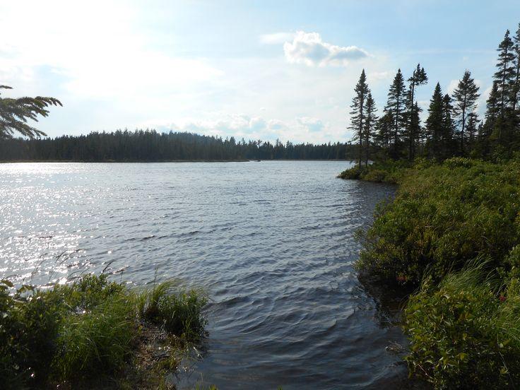 Bowser Lake Northern NB