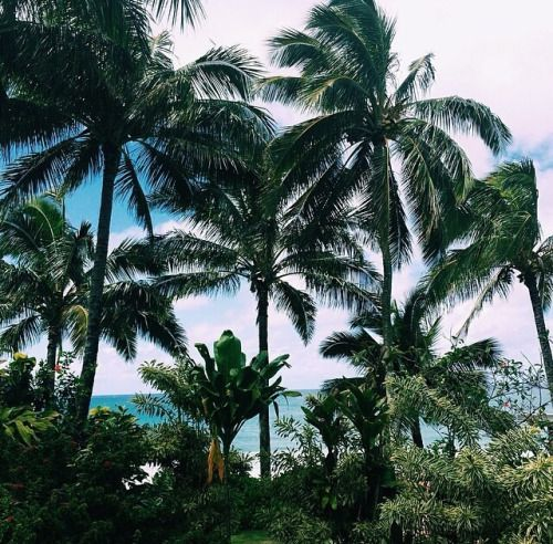 In love with paradise.