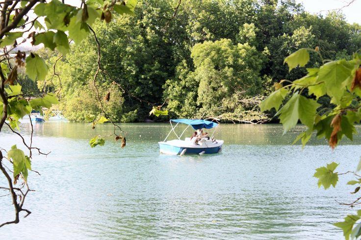 Balades Lyonnaises // Le #Parc de la Tête d'Or, #Lyon #France #park #nature #lake