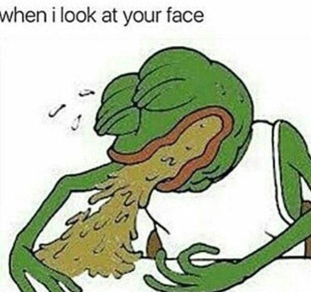 8 Best Memes Images On Pinterest Dankest Memes Frog Meme And