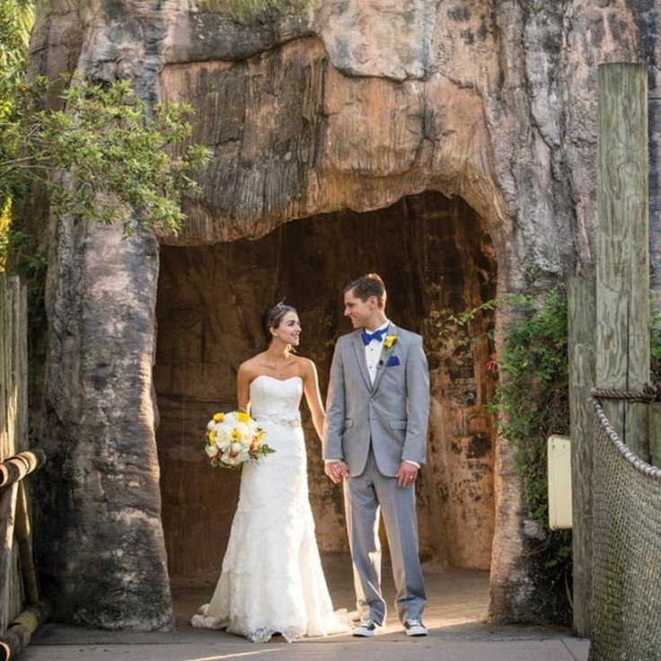 9 best zoo weddings images on pinterest melbourne zoo