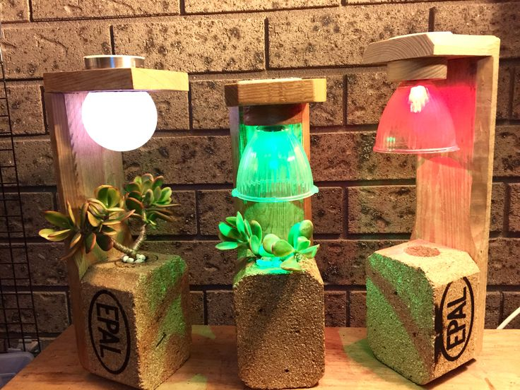 Recycled Wood Pallet Planters with Real Succulents and LED Night Lights