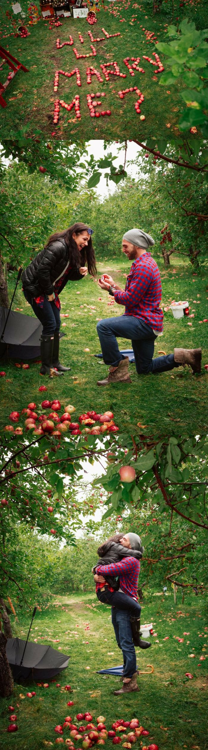 They were picking apples in an orchard when he asked her to marry him! It was the cutest surprise proposal.