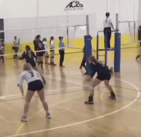 New trending GIF on Giphy. fail ouch volleyball in the face. Follow Me CooliPhone6Case on Twitter Facebook Google Instagram LinkedIn Blogger Tumblr Youtube