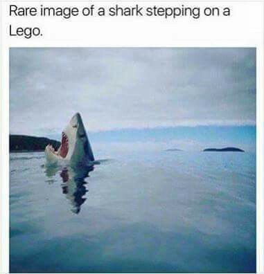 Ha ha ha!                                                                                                                                                                                 More