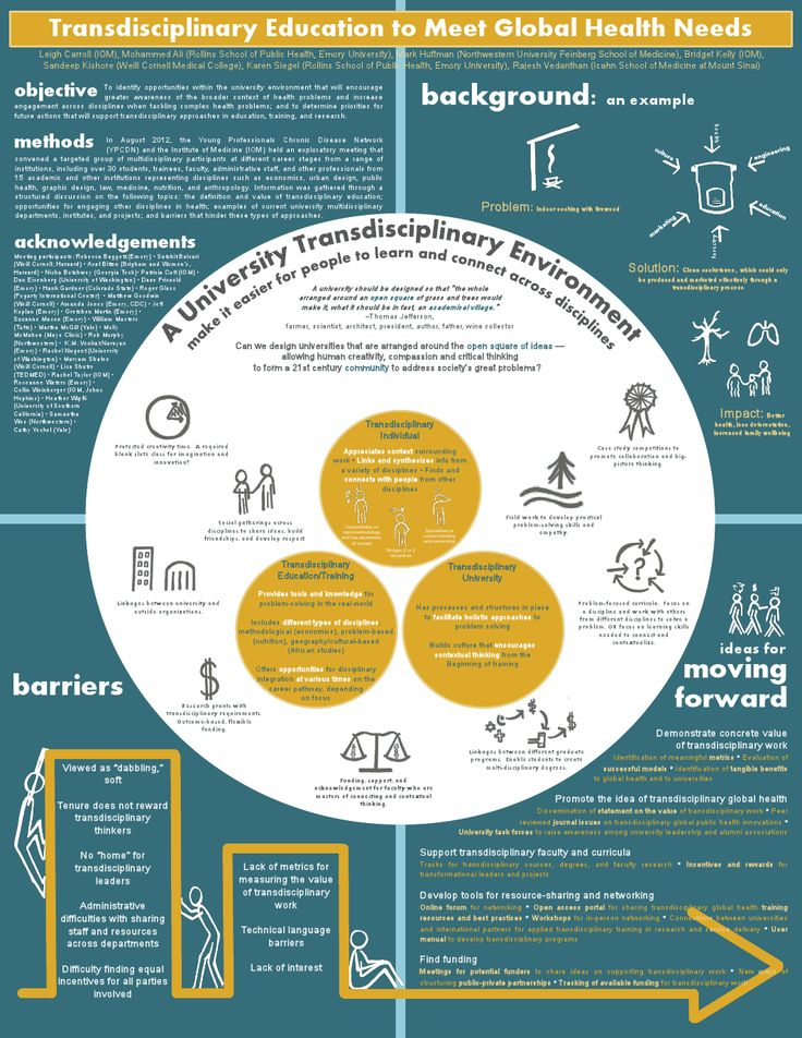 Innovative Poster Highlights Work Towards Trans-Disciplinary Education for Global Health | THL News Blog