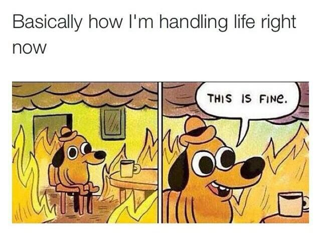 Basically how I'm handling life right now.