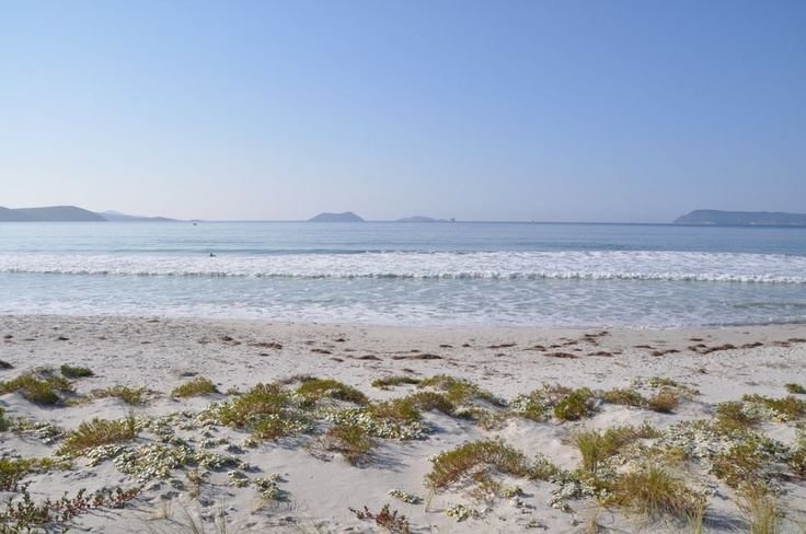 What a peaceful spot at Middleton Beach!